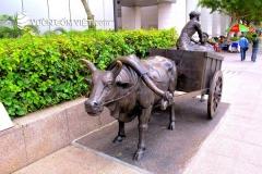 Nhà cung cấp tượng trâu tiểu cảnh sân vườn giá rẻ tại TpHCM